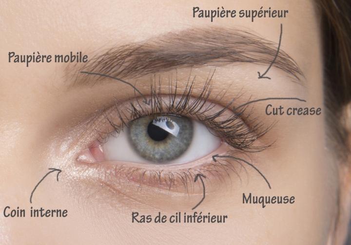 Maquillage des yeux techniques